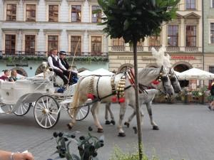 Cavalli a Cracovia